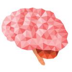 Zdroj: http://www.mindful.org/wp-content/uploads/2016/02/mind.jpg