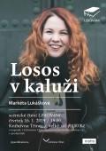 losos_v_kaluzi_k3 WEB